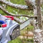 Safety First: Is Using a Chainsaw a Good Idea?