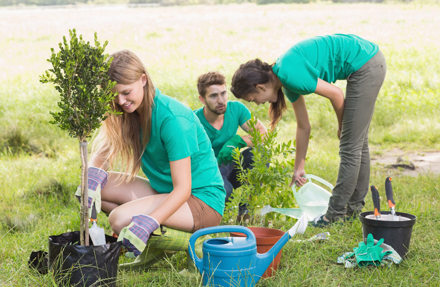 Get Land Ready For Spring Tree Planting